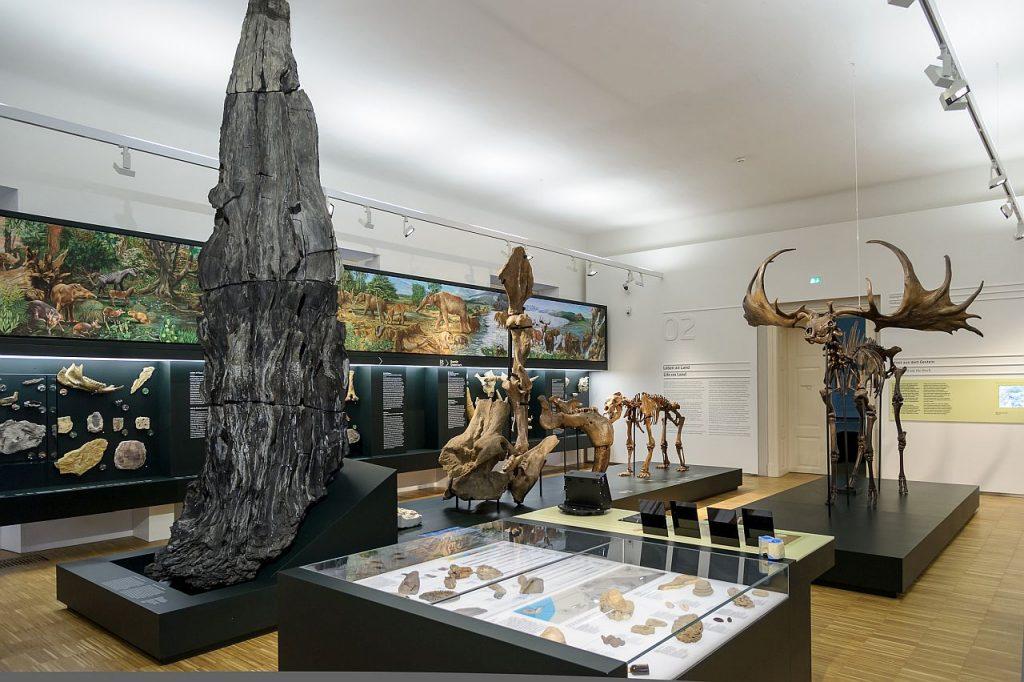 Naturkundemuseum Graz