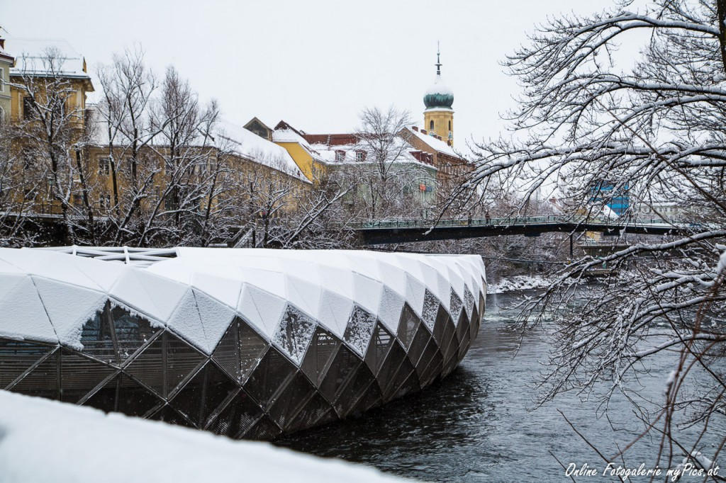 Murinsel im Winter