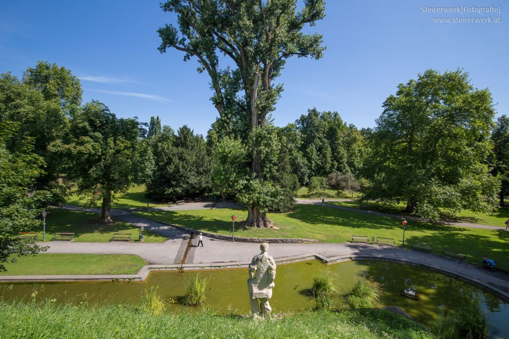 Stadtpark im Sommer