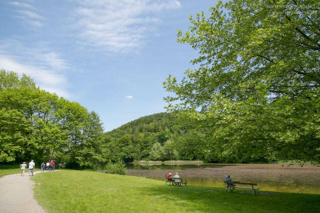 Spazieren im Sommer am Thalersee