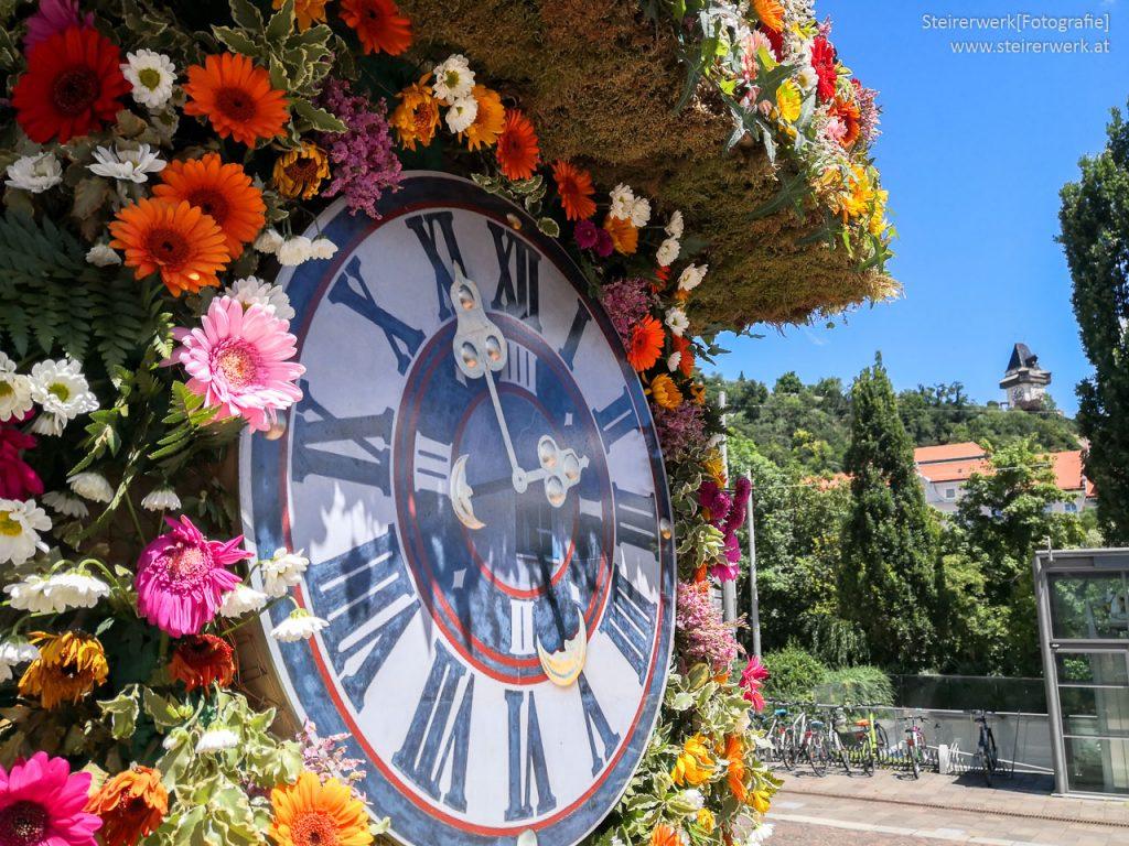 Blumen Uhrturm Graz