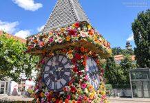Blumenuhrturm