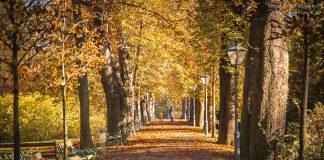 Herbst in Graz
