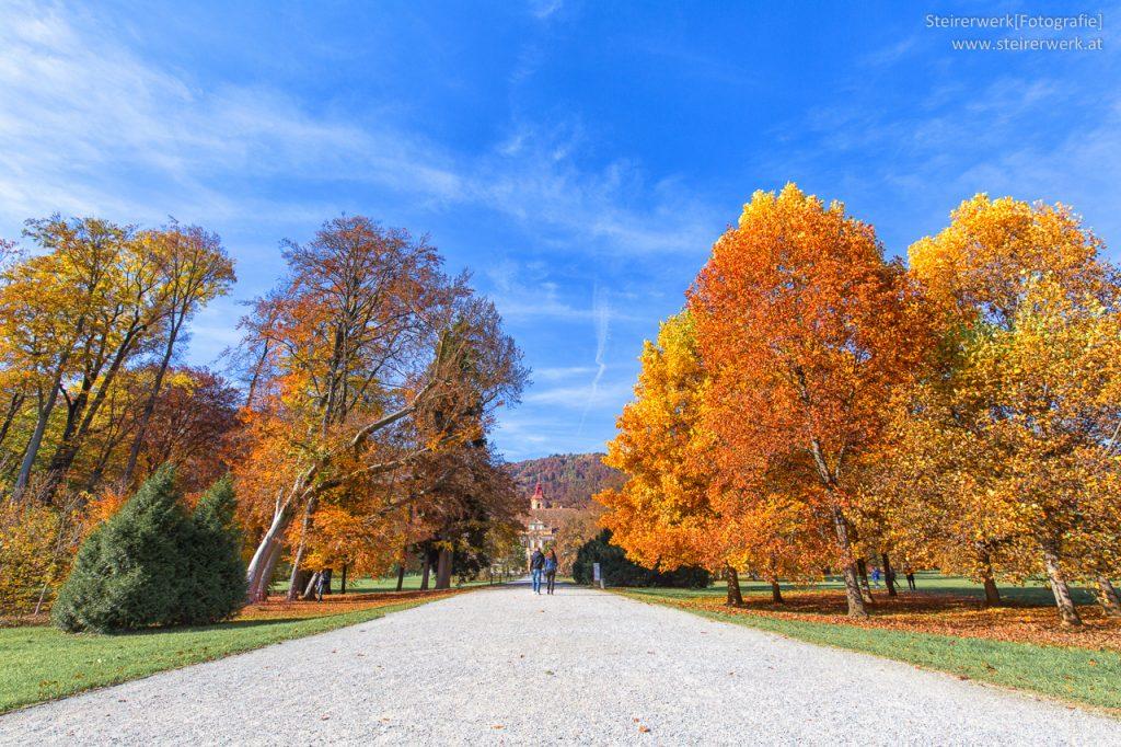 Herbstspaziergang im Park